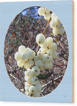 Snowberry Cluster Wood Print by Will Borden