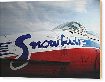 Wood Print featuring the photograph Snowbirds 2 by Mark Alan Perry