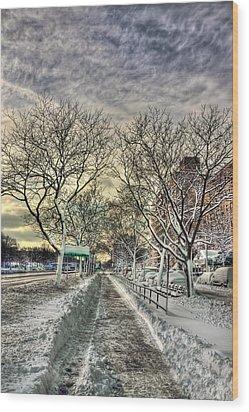 Snowbound Wood Print by Evelina Kremsdorf