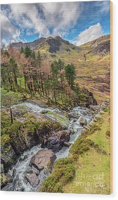 Snowdonia Landscape Winter Wood Print by Adrian Evans