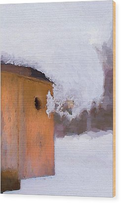 Wood Print featuring the photograph Snowdrift On The Bluebird House by Gary Slawsky