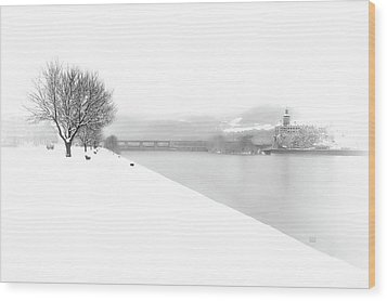 Snowfall On The River Danube At Ybbs Wood Print