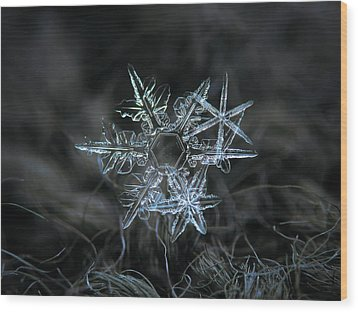 Wood Print featuring the photograph Snowflake Of 19 March 2013 by Alexey Kljatov