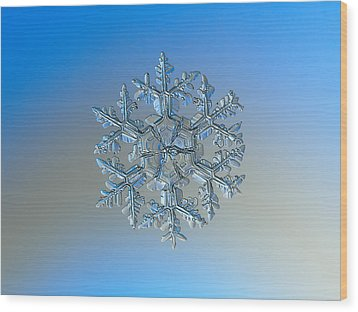 Wood Print featuring the photograph Snowflake Photo - Gardener's Dream by Alexey Kljatov