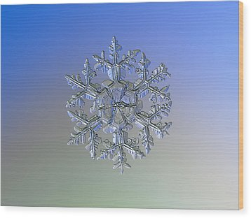 Wood Print featuring the photograph Snowflake Photo - Gardener's Dream Alternate by Alexey Kljatov