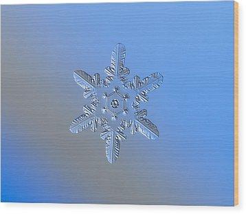 Snowflake Photo - Heart-powered Star Alternate Wood Print by Alexey Kljatov