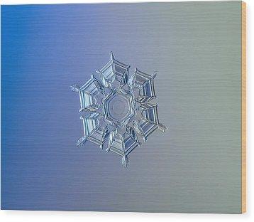 Snowflake Photo - Ice Relief Wood Print