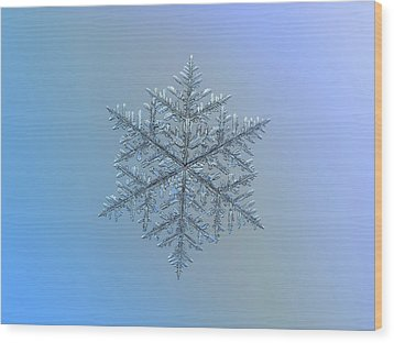 Snowflake Photo - Majestic Crystal Wood Print by Alexey Kljatov