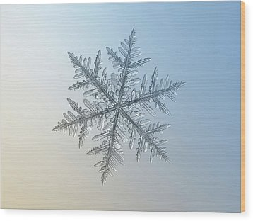 Wood Print featuring the photograph Snowflake Photo - Silverware by Alexey Kljatov