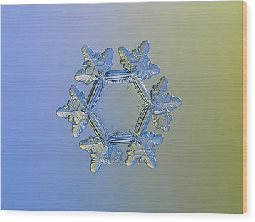 Snowflake Photo - Sunflower, Golden Version Wood Print