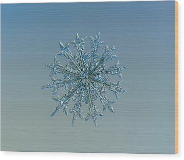 Wood Print featuring the photograph Snowflake Photo - Twelve Months by Alexey Kljatov