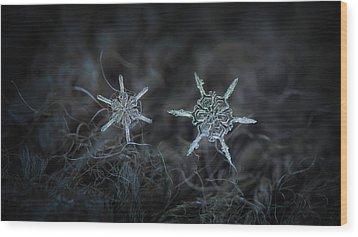 Snowflake Photo - When Winters Meets Wood Print by Alexey Kljatov