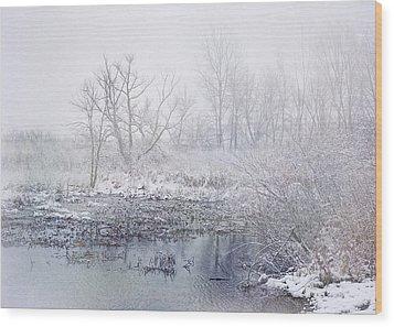 Snowmist Marsh Wood Print