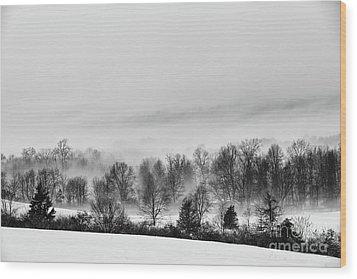 Snowscape Wood Print by Nicki McManus