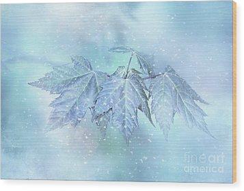 Snowy Baby Leaves Wood Print