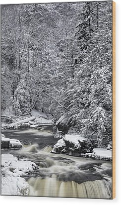 Snowy Blackwater Wood Print