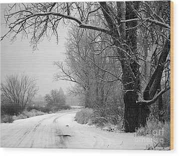 Snowy Branch Over Country Road - Black And White Wood Print by Carol Groenen