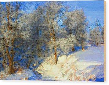 Snowy Creek Etc Wood Print by Julie Lueders