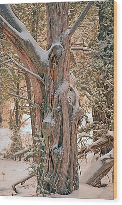 Wood Print featuring the photograph Snowy Dead Tree by Donna Greene