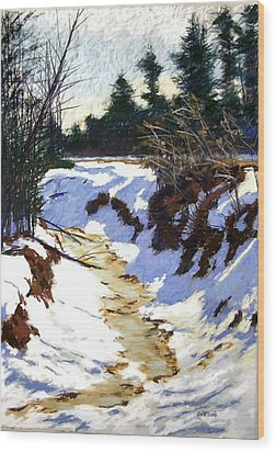 Snowy Ditch Wood Print by Mary McInnis