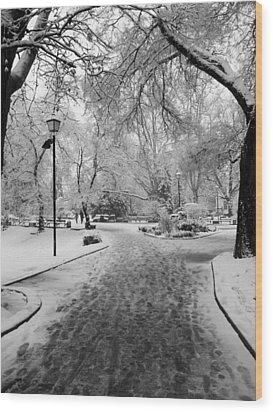 Snowy Entrance To The Park Wood Print by Rae Tucker