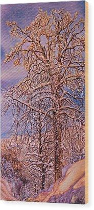 Snowy Wood Print