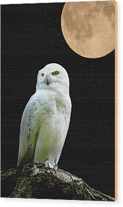 Wood Print featuring the photograph Snowy Owl Under The Moon by Scott Carruthers