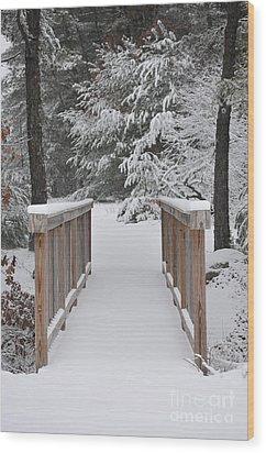 Snowy Path Wood Print by Catherine Reusch Daley
