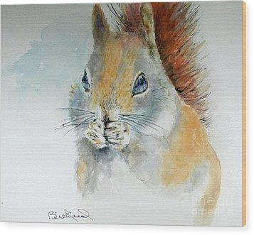 Snowy Red Squirrel Wood Print