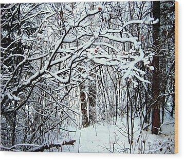 Snowy Silence Wood Print by Shirley Sirois