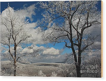 Snowy Sunday Wood Print by Lois Bryan
