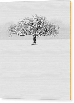 So Alone, A Perfect Reflection Of My Empty Soul Wood Print by Matt Anderson