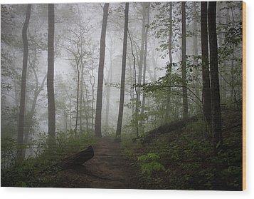 So Foggy Wood Print