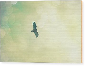 Wood Print featuring the photograph Soar by Melanie Alexandra Price