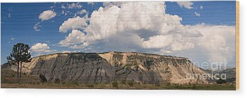 Soaring Above Mount Everts Wood Print by Charles Kozierok