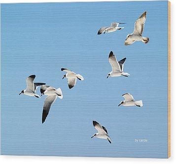 Soaring Wood Print by Athala Carole Bruckner