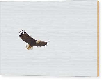 Wood Print featuring the photograph Soaring High 0881 by Michael Peychich