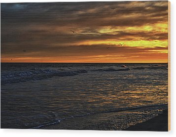 Soaring In The Sunset Wood Print by Kelly Reber