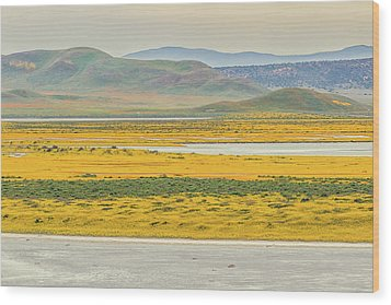 Wood Print featuring the photograph Soda Lake To Caliente Range by Marc Crumpler