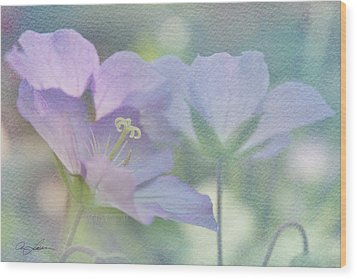 Wood Print featuring the photograph Soft Blue by Ann Lauwers