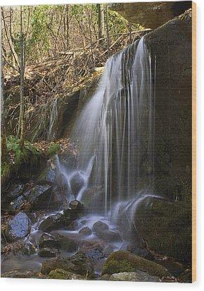 Soft Falls Wood Print by Alan Raasch