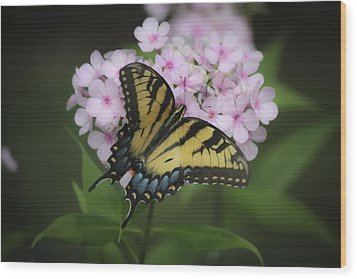 Soft Focus Tiger Swallowtail Wood Print by Teresa Mucha