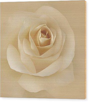 Soft Golden Rose Flower Wood Print by Jennie Marie Schell
