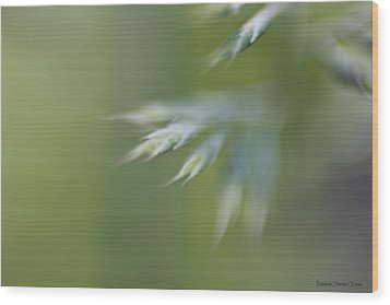 Wood Print featuring the photograph Soft Green by Michaela Preston