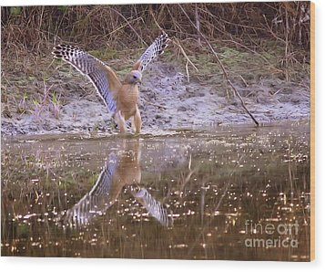 Soft Landing On The Pond Wood Print by Carol Groenen
