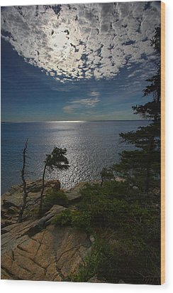 Soft Light On Otter Point Wood Print