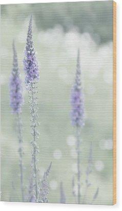 Soft Pastels Wood Print by Svetlana Sewell