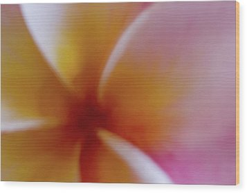 Wood Print featuring the photograph Soft Plumeria by Roger Mullenhour