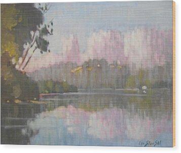 Soft Reflections Wood Print by Len Stomski