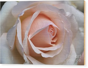 Soft Rose Wood Print by Joy Watson
